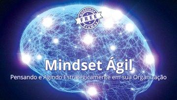 Mindset Ágil! Pensando e Agindo Estrategicamente em sua Organização